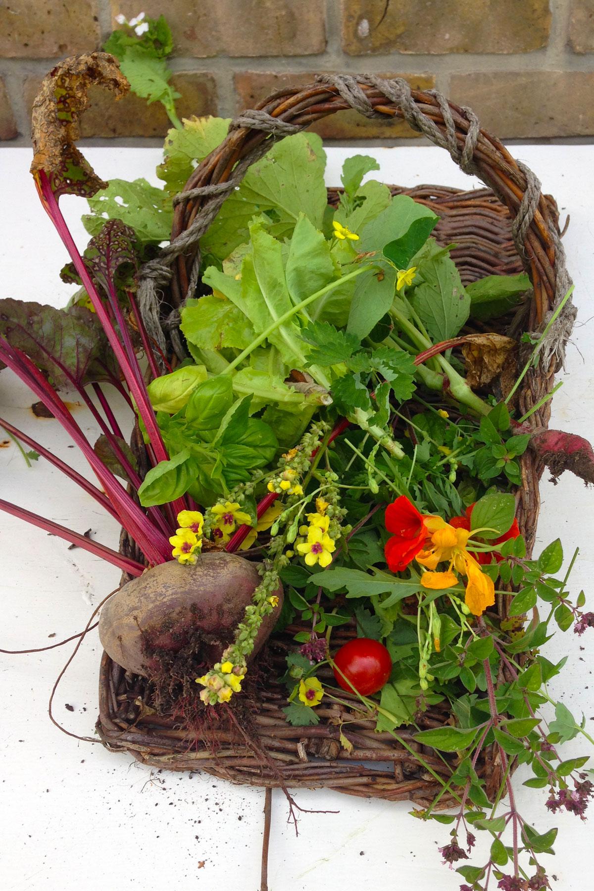 Travelingspoon ghent suzy vegetablebasket